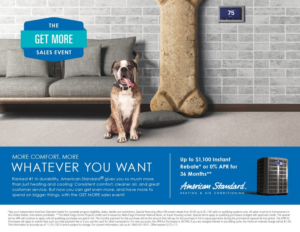 Elizondo Air Dog Offer